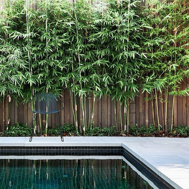 Inspirasi pagar dari bambu