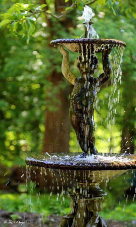 taman Dari Kolam dan Air Mancur