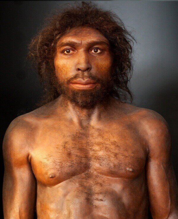Manusia Purba Homo Rhodesiensis